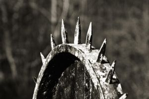 Spikes on wheel by CharmingPhotography