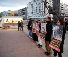 protest against animal circus by EmbetanteYahi