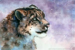 Snow Leopard by EternaLegend