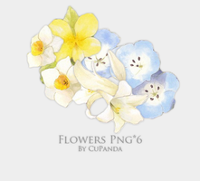 Flowers Png(2) by CuPanda