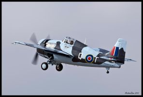 Riverside F4F Wildcat by AirshowDave
