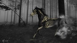 Ghost horse by Hamera