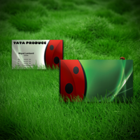 Tata Produce Business Card by rogaziano