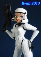 Helloo stormtrooper 10 by celsoryuji