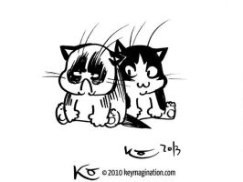 Grumpy Cat 03 2013 by Keymagination