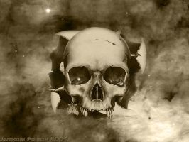 Skull by poi5on