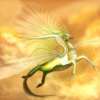 Sky dragon by sovereign