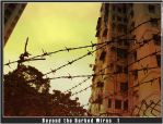 Beyond the Barbed Wires by flamehawk