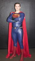 Facts 2015. superman 1 by beedoll