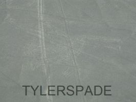 Nazca lines: The Dog or Coyote? by Tylerspade