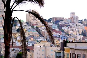 The Hills of San Fransisco by justjake54