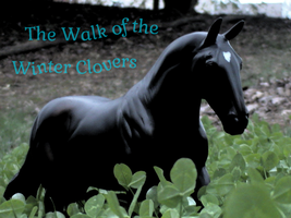 Walk of the Winter Clovers by Horseloverjump