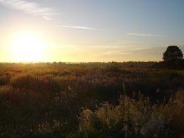 Solstice over Meadow 5 by ChaoticatCreations