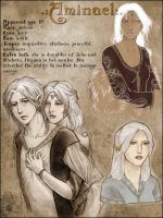 Character sheet: Aminael by sionra