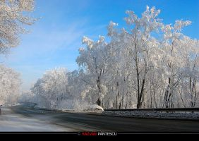 Winter roads.. by razvanx