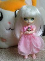 .: my doll is an insane robot :. by tirsden