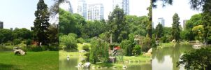 Japanese Gardens-Contrasts01 by CotyStock