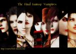 The Final Fantasy Vampires Wallpaper by COURTZ57