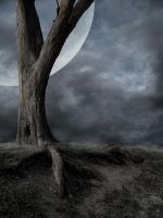Dead Tree and Moon BG by the-night-bird