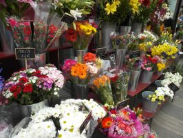 Flower Stand by lu40953