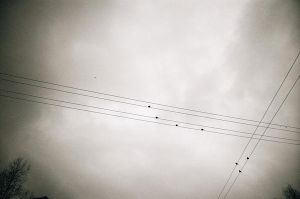 wires by ee2606