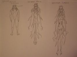 Winter Vales Character Concepts 1 by TheSkaldofNvrwinter