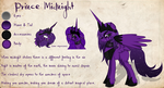 Commission Prince Midnight RefSheet by Lost-in-Equestria