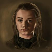 GoT: Arya Stark by Prof-Dr-Dr-Weird