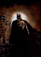 Batman Begins by Herrickk