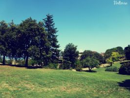 Volterra's park by Hal1313