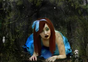 Alice in Mononoke Land by crazynoodle22