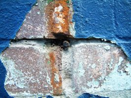 Blue Painted Brick 01 by lobe-stock