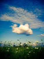 one cloud by lostinthisphotograph
