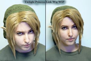 TP: Link Wig and Hat WIP 02 by Ratsukorr