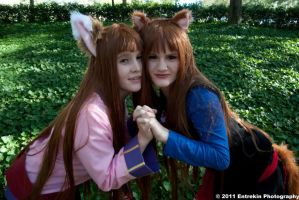 Spice and Wolf - Seeing Double by Foxy-Cosplay