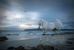 Set Fire to the Rain by seaside6188168