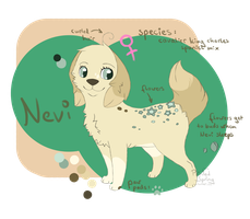 Nevi Ref Sheet by Luminatea