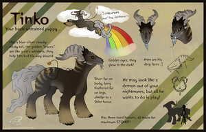 Tinko Ref by Dioptasy