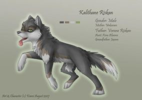 Kalithane - RP Char Sheet by Kiarei-star
