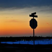 Stop Sign Silhouette by LDFranklin