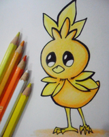Torchic by Finn-The-FishBowl