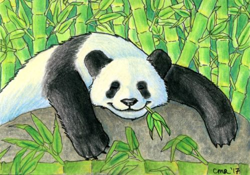 ACEO: Bamboo Connoisseur by WooflesArt