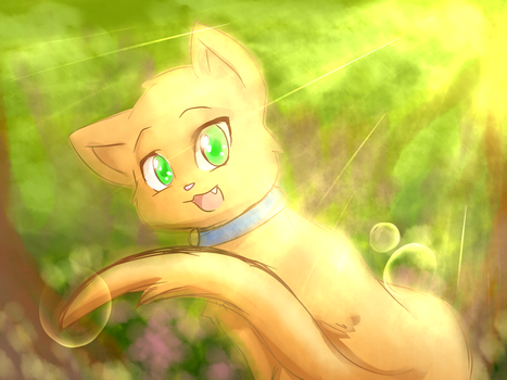 Sss Warrior Cats (Firepaw) by thegreatrouge