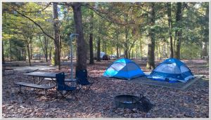 Smokemont Campground Site C4 by slowdog294