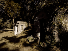 To The Grave by Draco-McWherter