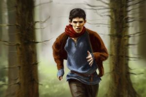 merlin by non-cubic