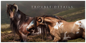 Trouble: details by Seluias