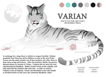Varien Character Sheet by akeli