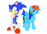 Sonic and Rainbow Dash Vector by MegaArtist923