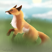 Red fox by ThunderRunner26